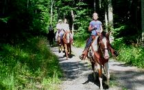 Horseback Ride on Bald Mountain Creek